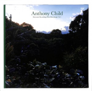 Anthony Child - Electronic Recordings 2LP EU MINT